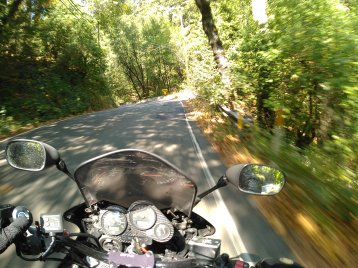 #2h1hz onboard motorcycle pov through forest with mountain road and speed blur
