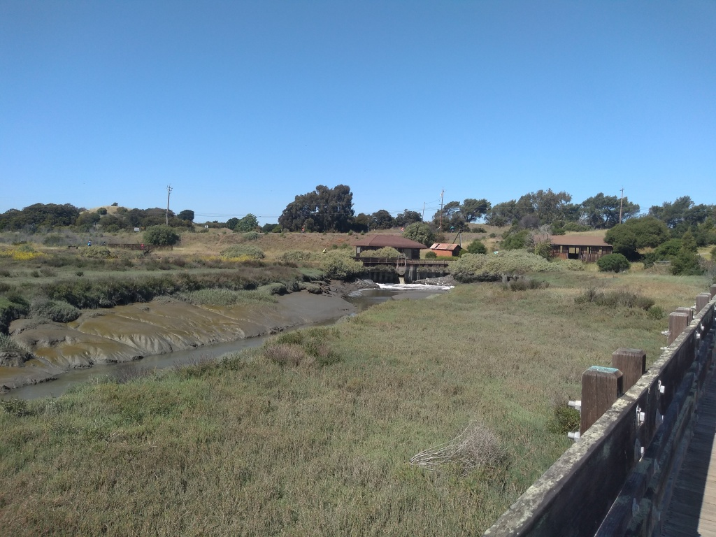 wetland with canal and pump station