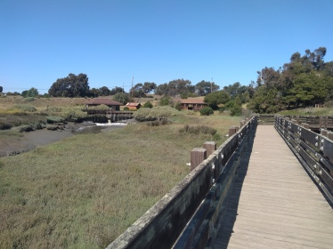 landscape wetland and walkway pier and buildings