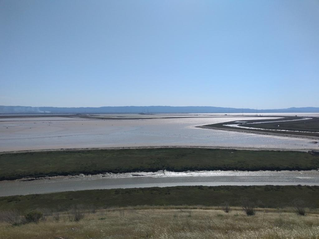 landscape wetland